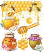 Set of honey — Stock Vector