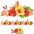 Stock Vector: Garland of ropical flowers