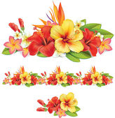 Garland of ropical flowers — Stock Vector