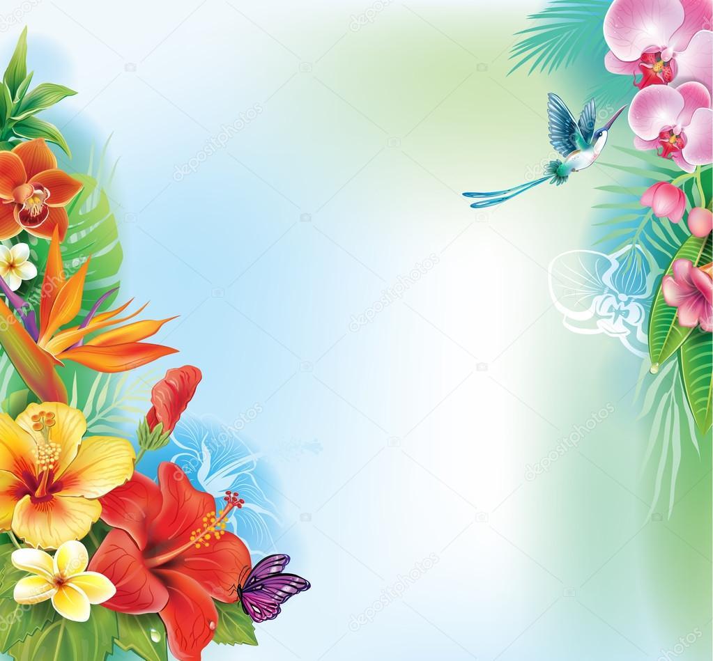 从热带花卉和叶子背景