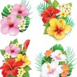 Stock Vector: Arrangement from hibiscus flowers