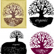 Stock Vector: Set of Tree symbols