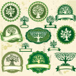 Set vintage labels with trees — Stock Vector