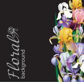 Iris flower vector background — Stock Vector