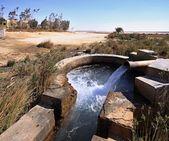 Spring of water near Kharga oasis — Stock Photo