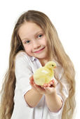 Cute girl holding little yellow chick — Stock Photo