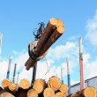 Stock Photo: Truck crane loading timber