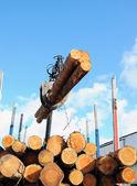 Truck crane loading timber — Stock Photo