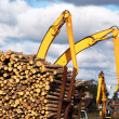 Timber yard — Stock Photo