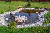 Garden pond — Stock Photo