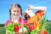Harvest of vegetables — Stock Photo