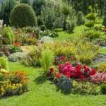 Цветочный сад — Стоковое фото #31726279