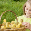 Girl  with goslings outdoor — Stock Photo