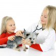 Little girls playing with dog — Stock Photo #34605773