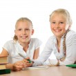 Girls studying at school — Stock Photo #44881421