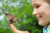 Happy girl feeding sparrow — Stockfoto