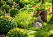 园林的花卉花园 — 图库照片