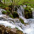 plitvice lakes — Stock Photo