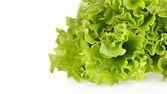 Ensalada verde — Foto de Stock