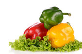 Red Green and Yellow peppers on salad leaf isolated on white bac — Stock Photo