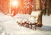 Banc à winter park — Photo