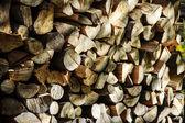 Bunch of felled tree — Stock Photo