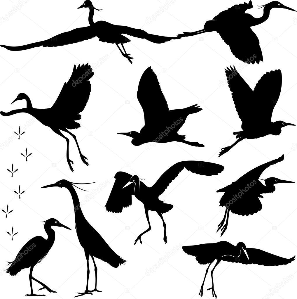 白鹭剪影图 — 图库矢量图像08