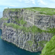 cliff of moher ireland — Stock Photo #12543511