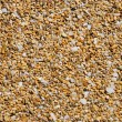 Close up background of wet beach sand — Stock Photo
