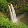 Waterfalls drop in a water pool in a lush green forest, with a r — ストック写真