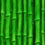 Lush green bamboo stalks - seamless texture — Stock Photo