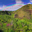 Stock Photo: Waterfall in Kauai With Rainbow