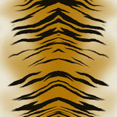 Texture of a tiger's pelt with the dorsal spine visible - great texture for 3D modeling and rendering — Stock Photo