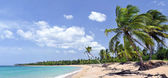 Breathtaking tropical beach panorama with a lot of copy-space, ideal for summer travel themes — Stock Photo