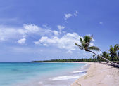 Breathtaking tropical beach with a lot of copy-space, ideal for summer travel themes — Stock Photo