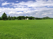 Lush green farm in Northern Vermont — Stock fotografie