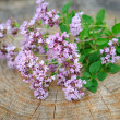 Stock Photo: Bunch of fresh oregano (Origanum vulgare)