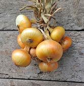 Pęczek cebuli na stare drewniane tła — Zdjęcie stockowe