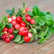 Berries of wild cowberry (Vaccinium vitis-idaea) are on a wooden background — Stock Photo