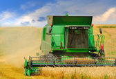 Combine harvester working on the field — Foto de Stock