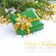 Christmas composition with branches of fir and Christmas decoration — Stock Photo #15618169