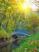 Beautiful autumn landscape with the river and by a bridge — Stock Photo