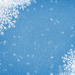 Winter christmas background — Stock Photo #16318389