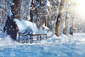 Bancada no parque coberto de neve — Foto Stock