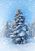 Snow covered Christmas tree. Winter landscape — Stock Photo