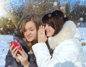 Two girls with a decorative heart in winter — Foto Stock