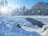 Winter landscape in frosty day — Stock Photo