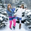 Young beautiful girls are in the winter forest - Stock Photo