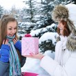 Stock Photo: Young beautiful girls in winter with gift