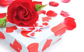 Little gift with red rose and petals on white background — Stock Photo